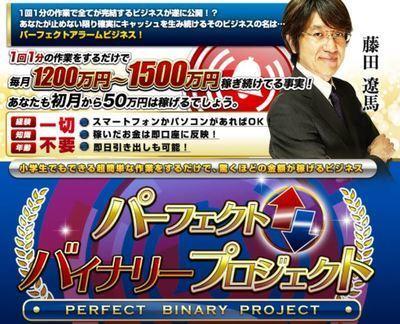 藤田遼馬 パーフェクトバイナリープロジェクト 批評